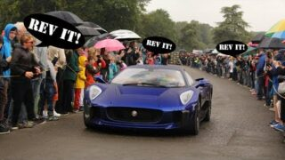 CRAZY KIDS SCREAM AT SUPERCARS OVER 350 TIMES! | Blenheim Classic and Supercar Parade